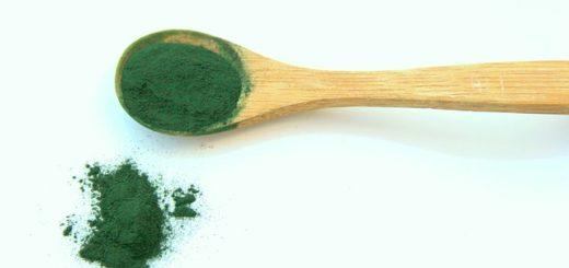 alga-chlorella