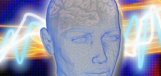 cervello-2